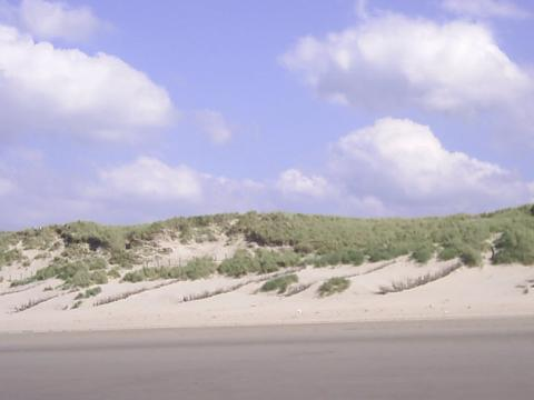 Algemeen: Zeepark Zeewind
