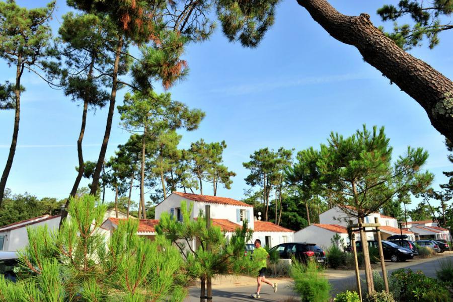 Algemeen: Le Domaine Des Oyats