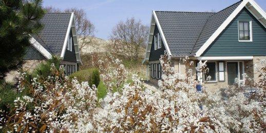 Algemeen: Landal Duinpark 't Hof van Haamstede