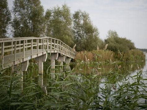 Algemeen: Waterrijk Oesterdam
