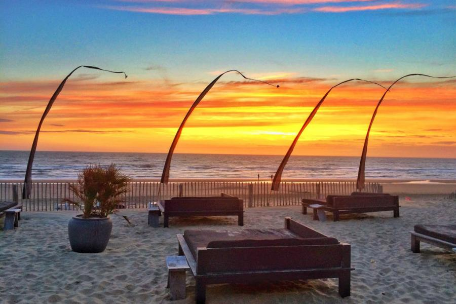 Algemeen: Sea Lodges Zandvoort