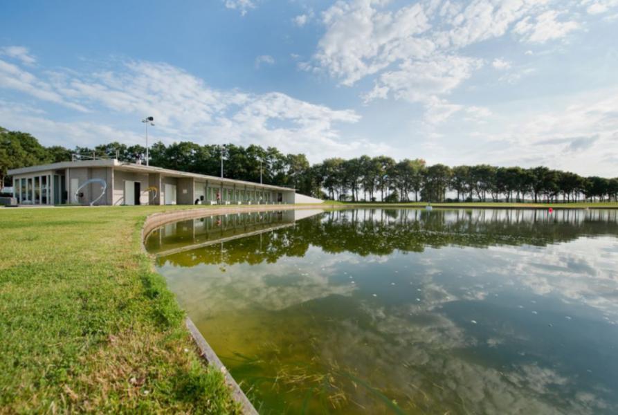 Algemeen: Bergvliet Villa's